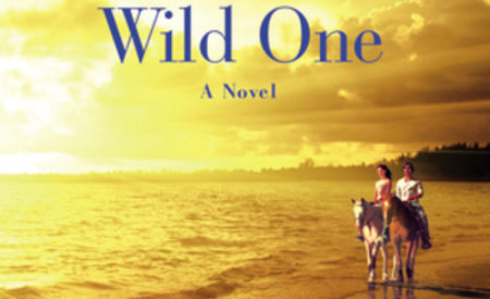 Excerpt and Giveaway ★ Nachos Figueros Presents Wild One