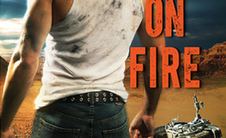 Review ❤️ Fury on Fire by Sophie Jordan