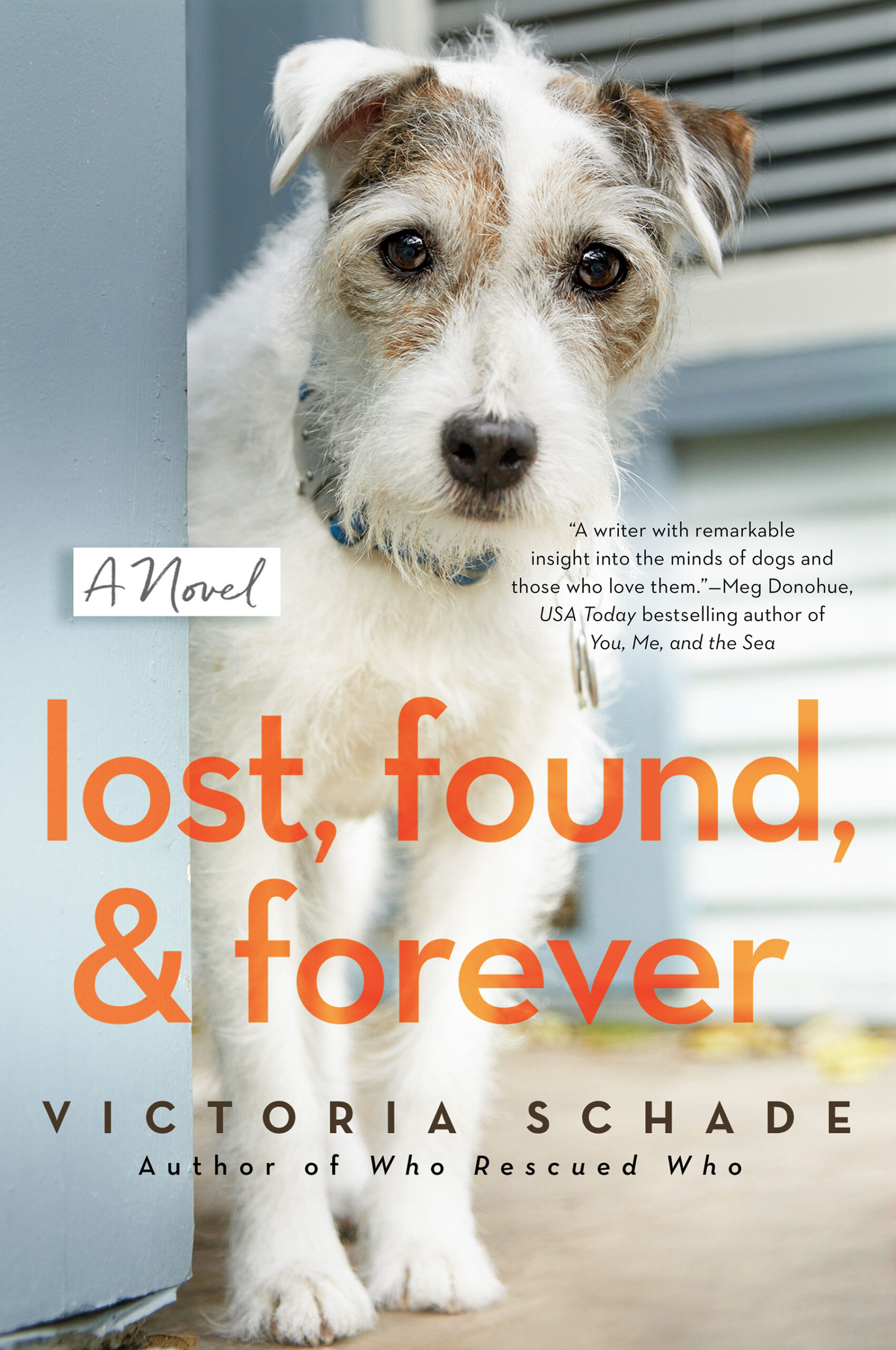 lost-found-and-forever-victoria-schade